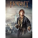 The Hobbit: The Desolation of Smaug ~ Ian McKellen
