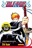 Bleach 40th Anniversary, Vol. 1 (Sweepstakes Edition) (1421526549) by Kubo, Tite