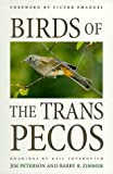 img - for Birds of the Trans-Pecos (Corrie Herring Hooks Series) by Peterson Jim Zimmer Barry R. (1998-01-01) Paperback book / textbook / text book