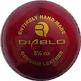R-Max Diablo Leather Cricket Ball