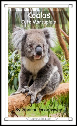 Sharon Greenaway - Koalas: Cute Marsupials (15-Minute Books Book 343) (English Edition)