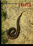 img - for Introducing poisonous snakes book / textbook / text book