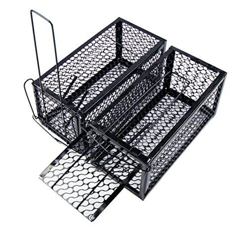 2-x-sundelyr-1-door-easy-mice-rat-rodent-cage-trap-indoor-outdoor-live-catcher-pest-control