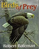 Birds of Prey - An Introduction