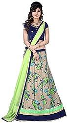 Vaidehi Fashion Women's Net Lehenga Choli (Green)