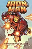 img - for Iron Man: Armored Vengeance book / textbook / text book