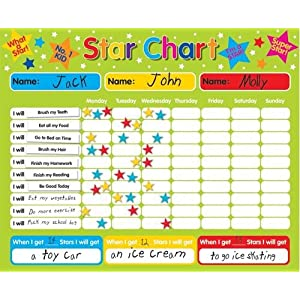 Star Behavior Chart http://www.ebay.com/itm/Magnetic-Reward-Star-Responsibility-Behavior-Chart-for-up-to-3-Children-/350628946352