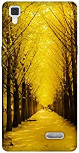 The Racoon Lean golden path hard plastic printed back case / cover for Oppo R7 Lite