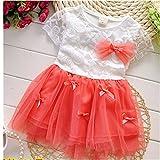 KAKA(TM) Summer Lovely Baby Girls Watermelon Red Chiffon Lace Floral Bowknot Dresses Princess Skirt