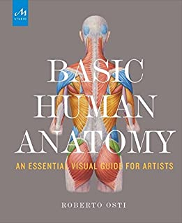 Book Cover: Basic Human Anatomy: An Essential Visual Guide for Artists