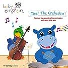 Baby Einstein - Meet The Orchestra