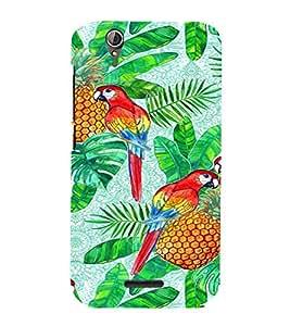 PrintVisa Parrot And Pineapple 3D Hard Polycarbonate Designer Back Case Cover for Acer Liquid Jade Z630