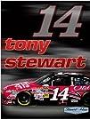 Tony Stewart 550 piece jigsaw puzzle