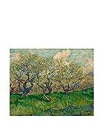 Especial Arte Lienzo Bloeiende boomgaard  Multicolor