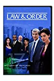 Law & Order: The Seventeenth Year