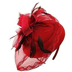 Derby Hat, English Tea Hat Retro Cherry Maroon Feather Mesh Net Flower Hat Fascinators Hairband/Headband/Hair Clip (Maroon)