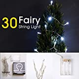 LIDORE 30 Counts Cold White LED Fairy String Lights. Best Gift for Decoration. Battery Operated.
