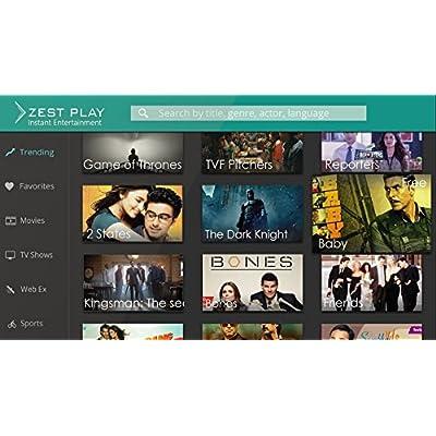 Zest PC (Mini PC Stick PC with Zest Play Instant Entertainment)
