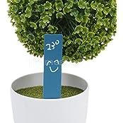 100pcs Blue Plastic Tags Plant Bonsai Pot Stake Marker Nursery Label 10x2cm