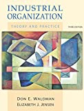 img - for Industrial Organization: Theory and Practice (3rd Edition) book / textbook / text book