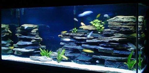 100% Natural Organic Aquarium Cave Rock Wall Decoration Aquascape Kit. Cichlid Cave, Iwagumi aquarium, salt water aquarium, freshwater aquarium, reptile aquarium, amphibian aquarium. Photo is of 3 kits.