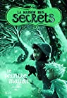 La maison des secrets, Tome 5 : Le peintre maudit