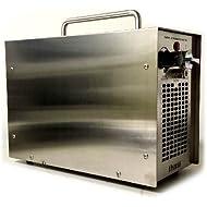 CleanAir Ozone Generator 5,000 Mg Air Deodorizer Ionizer Ozonator Ozonizer Ozone Machine