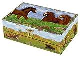 Prairie Music Box