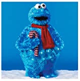 PRODUCT WORKS Cookie Monster Outdoor Decor, 28-Inch (Discontinued by Manufacturer)