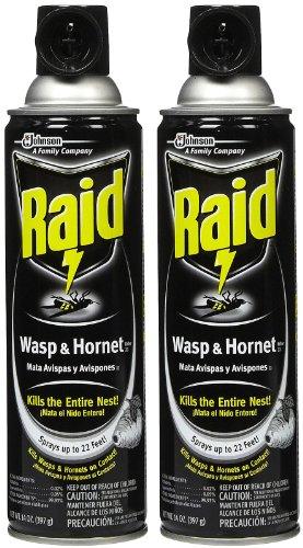raid-wasp-hornet-killer-33-insecticide-spray-14-oz-2-pk