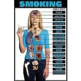 Harmful Effects of Smoking, Laminated Poster