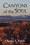 Canyons of the Soul