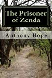 img - for The Prisoner of Zenda book / textbook / text book