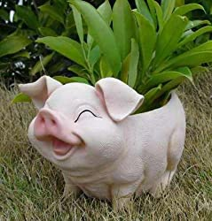 Wonderland Smiling Pig Flower Pot ( garden pots , planter , gifting )