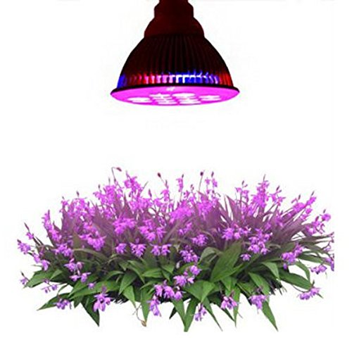 LiteXim 12W E27 12 LED (3 Blue & 9 Red) Plant Grow Light Bulb for Hydroponic Garden Greenhouses - Perfect Grow Lights for Indoor Plants Greenhouse Cultivation
