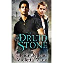 The Druid Stone Audiobook by Heidi Belleau, Violetta Vane Narrated by Ian Ruane