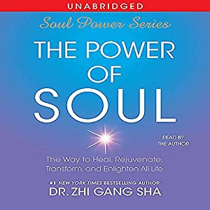The Power of Soul Audiobook