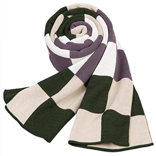 HONEYJOY Mens Winter Scarf Plaid Stripes Long Cashmere Pashmina Feel Warm Scarves (One Size, 02)