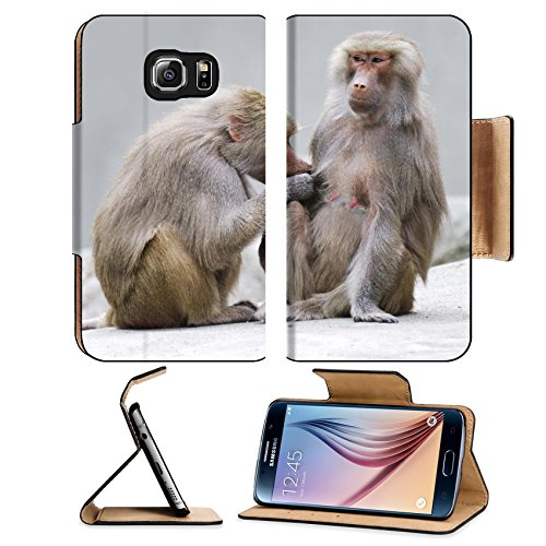 msd-premium-samsung-galaxy-s6-edge-flip-pu-leather-wallet-case-image-id-14744895-two-baboons-engaged