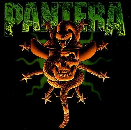 Pantera Skull And Snake Pantera Snake in Skull
