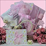 Welcome Little Princess ~ Girl: Pink Baby Gift Basket
