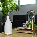 Signstek 100 ML Ceramic Aromatherapy...