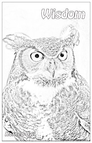 Free Wildlife Colouring Pages