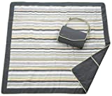 JJ Cole Collections All-Purpose Blanket, Gray/Green