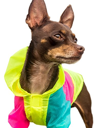 Neon-Dog-Jacket-Teacup-XXS-XS-and-Small-Dog-Clothes-Chihuahua-and-Yorkie-Clothes
