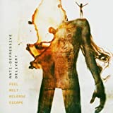 Feel Melt Release Escape by ANTI-DEPRESSIVE DELIVERY (2004-05-03)