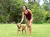 Dog Training Leash By Puppylovee - 5 Out of 5 Stars - Hands Free Premium Leash Great for Running Jogging Hiking Walking - Pet Supplies for Dogs Leashes - For Small and Large Dogs 30 to 100 Lbs - Perfect Pet Lover Gifts - Pets Dogs Toys Gift - Train Dog to Run By Your Side