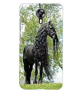 ColourCraft Gracious Horse Design Back Case Cover for MICROMAX CANVAS XPRESS 2 E313