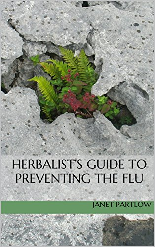 Flu Herbal Remedies