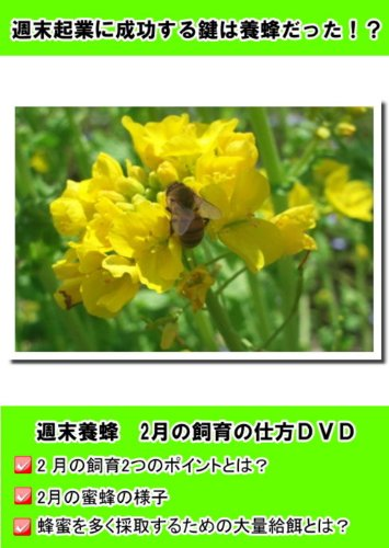 2011年度版 週末養蜂2月 [DVD]